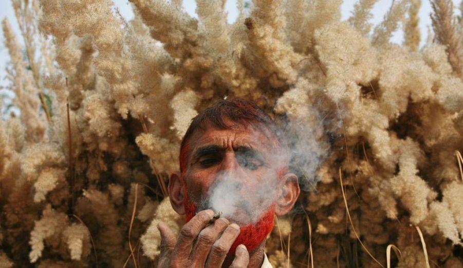 Pause bidi (cigarette indienne) devant un champ de canne à sucre, pour un fermier de Jammu, dans le Cachemire indien.