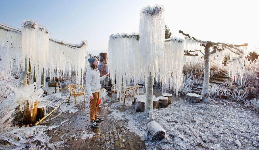 Thijs Glas admire la glace sur les branches surgelées dans l'espace privé de la pépinière de Heerhugowaard, aux Pays-Bas.