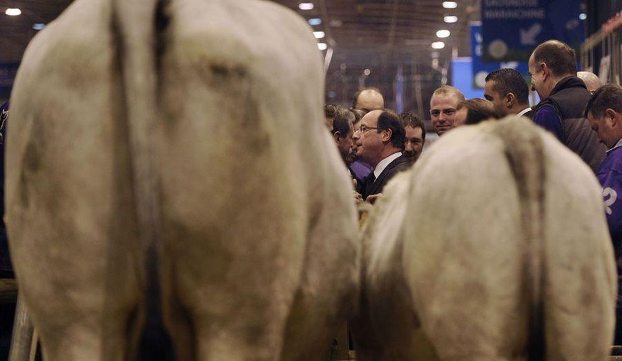 Le candidat socialiste à la présidentielle, François Hollande, au Salon de l'Agriculture, porte de Versailles, à Paris. Le député de Corrèze, qui est arrivé vers six heures du matin, a prévu d'y passer une large partie de la journée.
