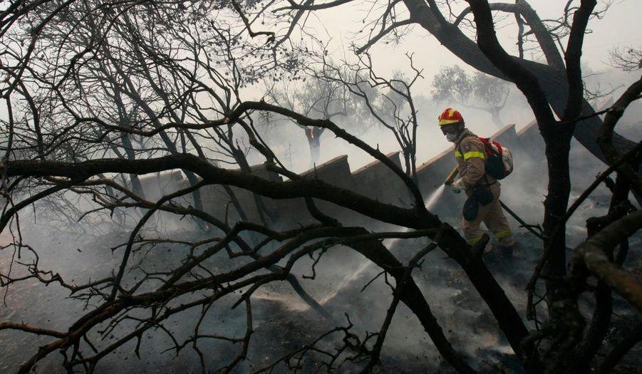 Les pompiers ont réussi lundi à faire reculer les feux de fôrets qui sévissent depuis vendredi dans la région d'Athènes, à l'exception du feu de Porto Germeno, en Béotie (60 km à l'ouest de la capitale), a annoncé en fin d'après-midi le porte-parole des pompiers qui craint dans cette zone des petites reprises de feu.