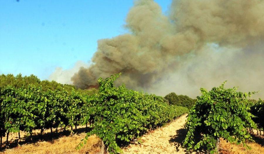 """De violents incendies se sont déclarés dans l'Hérault lundi en milieu d'après-midi. """"On a mobilisé la quasi totalité des sapeurs pompiers de l'Hérault"""", a poursuivi le préfet, qui s'est félicité qu'il n'y ait aucune victime à déplorer. La vigilance est néanmoins de mise avec le lever du jour, """"il y a des rafales de vent tourbillonnant qui peuvent faire progresser le feu de 300 mètres d'un seul coup"""". """"On a fait en sorte qu'il n'y ait pas de panique"""", a commenté Yves Pietrasanta, le vice-président du Conseil régional de Languedoc Rousillon. Lui aussi invité sur Europe 1 mardi matin, il s'est félicité qu'il y ait """"zéro victime"""". L'origine des incendies reste à ce jour indéterminée."""