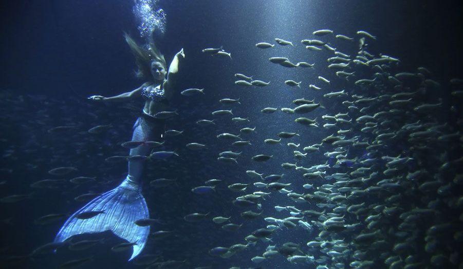 """Une femme s'est habillée en sirène à l'occasion des """"Spirits of Tampa"""", un événement organisé pour les participants de la convention nationale des Républicains, dans l'aquarium de Floride, dans la ville de Tampa."""