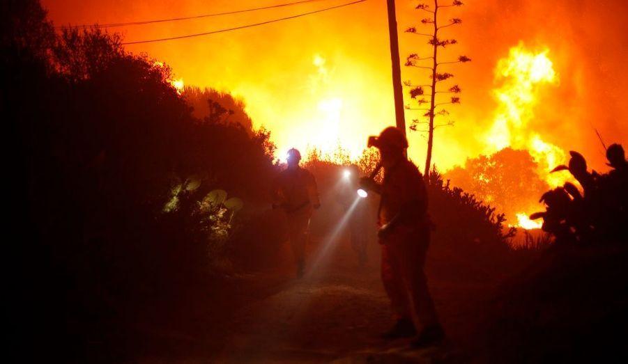 Des membres de la protection civile procèdent à l'évacuation d'un quartier résidentiel d'Elviria, près de Malaga, suite à un incendie.