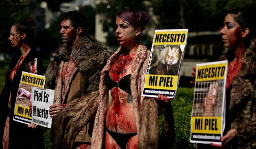 Des activistes d'Anima Naturali protestent contre le port de la fourrure à Mexico.