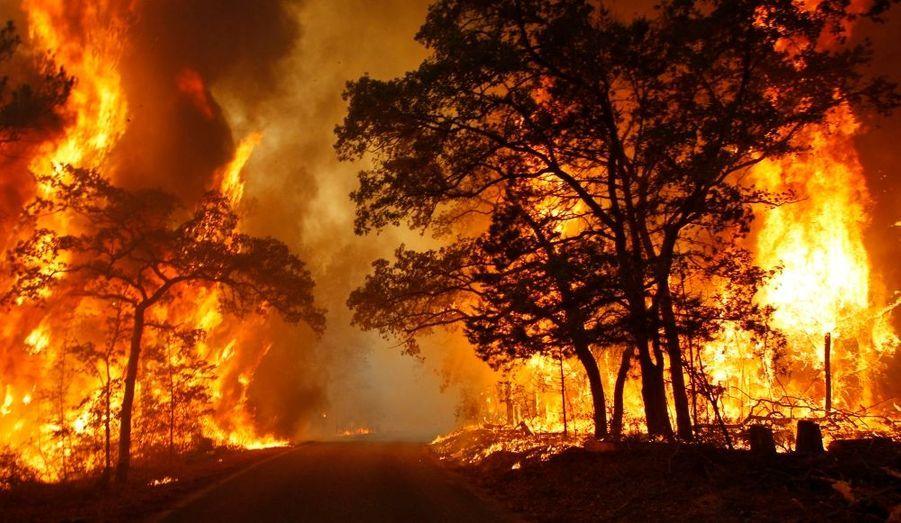 La parc naturel de Bastrop (Texas) a été touché par un incendie, qui a menacé plus d'un millier d'habitations.