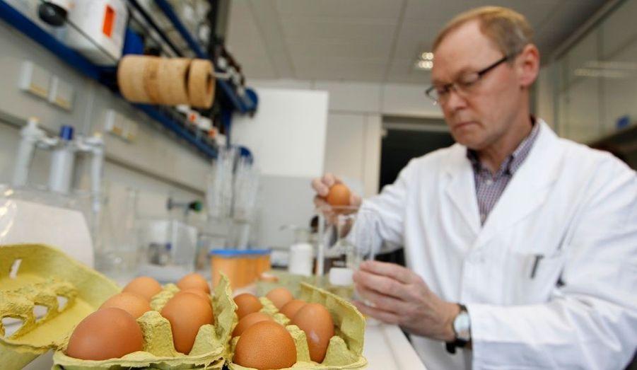 Un employé d'un laboratoire d'analyses alimentaires de Munster en Allemagne, contrôle des oeufs soupçonnés d'être contaminés par la dioxine. Les autorités sanitaires allemandes enquêtent sur au moins 34 producteurs d'œufs dans les États fédéraux de la Rhénanie, du Nord-Westphalie et de la Basse-Saxe après la découverte de dioxine dans des œufs et de la volaille la semaine dernière. La dioxine est censée proviendrait des aliments pour animaux contaminés par des graisses industrielles.