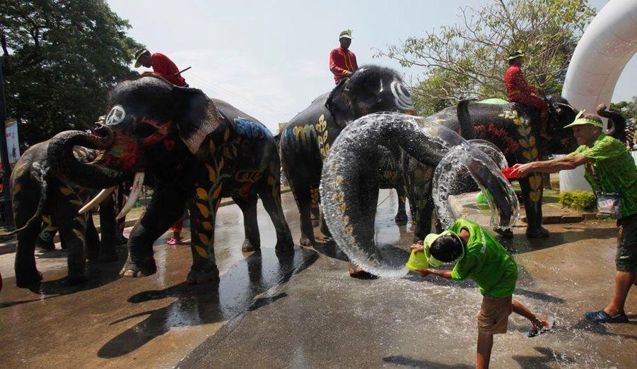 A l'occasion du Festival de l'eau de Songkran en Thaïlande, des éléphants éclaboussent les passants. Cette fête, la plus importante de l'année, célèbre le début du nouvel an traditionnel thaïlandais.