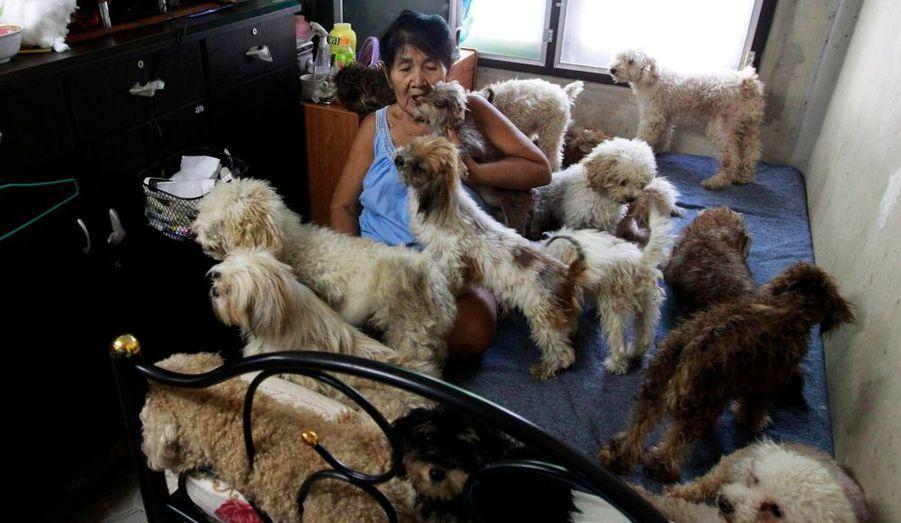 Manee Sangchan, 67 ans, joue avec des chiens à son domicile dans la banlieue de Bangkok. Manee a pris en charge des centaines de chiens errants et des animaux domestiques abandonnés par leurs propriétaires. Dans sa maison de 400 mètres carrés, elle s'occupe de ces animaux depuis plus de 40 ans. Manee a actuellement plus de 500 chiens et dépense 60 euros chaque jour pour prendre soin d'eux.