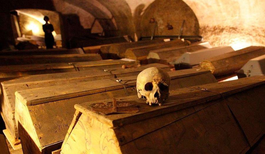 Dans les sous-terrains de Vienne, des cercueils sont entreposés et attendent d'être restaurés. Cette crypte a été utilisée pour environ 4000 enterrements de 1560 à 1783 et beaucoup de cadavres sont maintenant momifiés à cause du microclimat. Les cercueils et les cadavres ont déjà été très endommagés par les scarabées et la haute humidité.