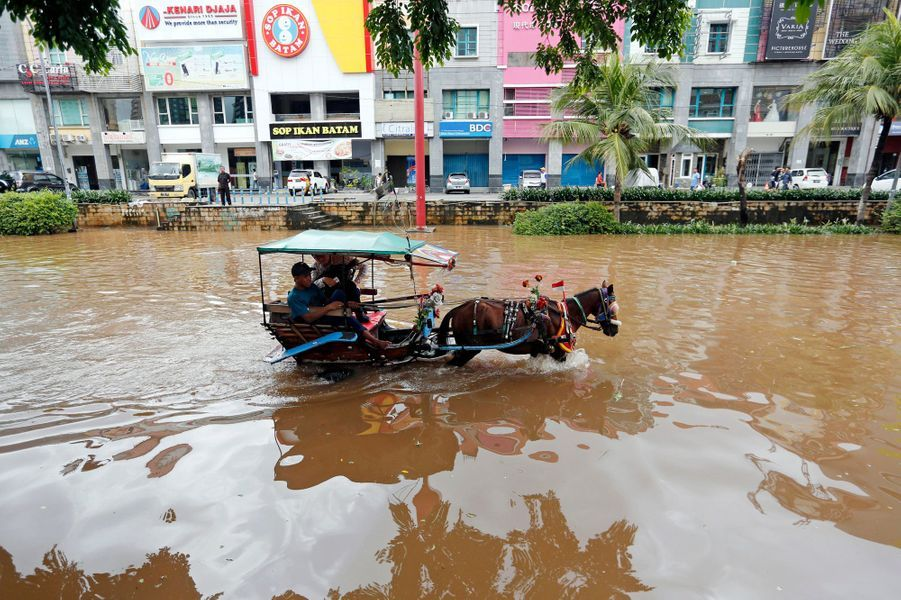 Passenger rides in a horse-drawn carriage down a flooded street after continuous heavy seasonal rains inundated many parts of Jakarta