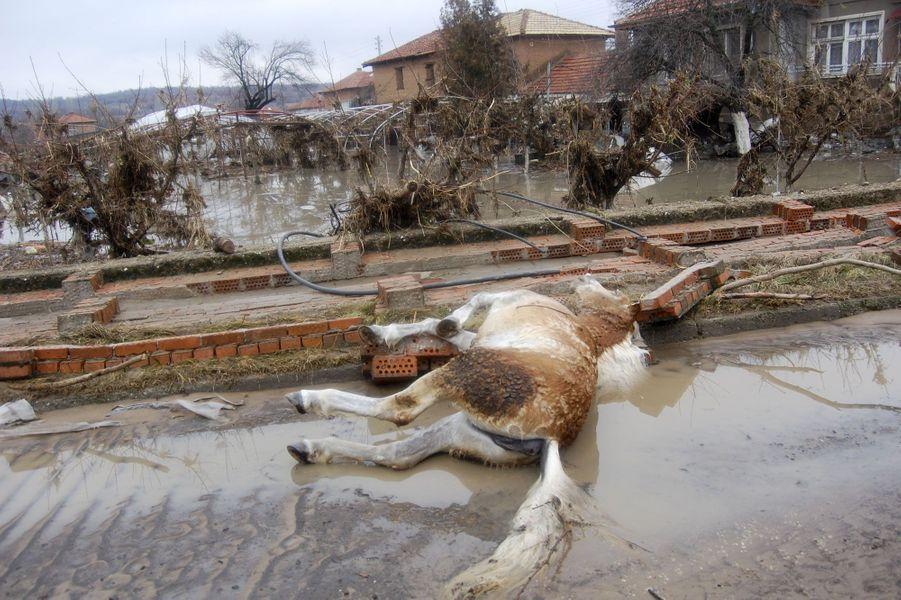 Mort après une inondation fatale en Bulgarie en 2012