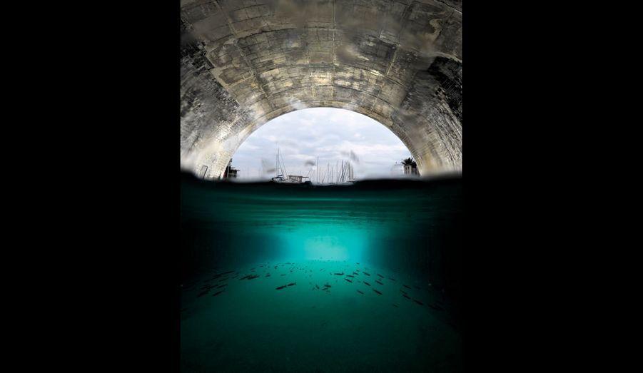 7 120 mètres delongueur, 22 mètresde largeur, 15 mètresde hauteur, 4 mètresde profondeur, letunnel du Rove, sousle massif de l'Estaque,reliait l'étang de Berreà la rade de Marseille.L'ouvrage s'est enpartie effondré en1963. Depuis, le canalest devenu une grottemarine appréciée parla faune et la flore.Il existe un projetcontroversé deréouverture poursoulager l'étang desa pollution massive.