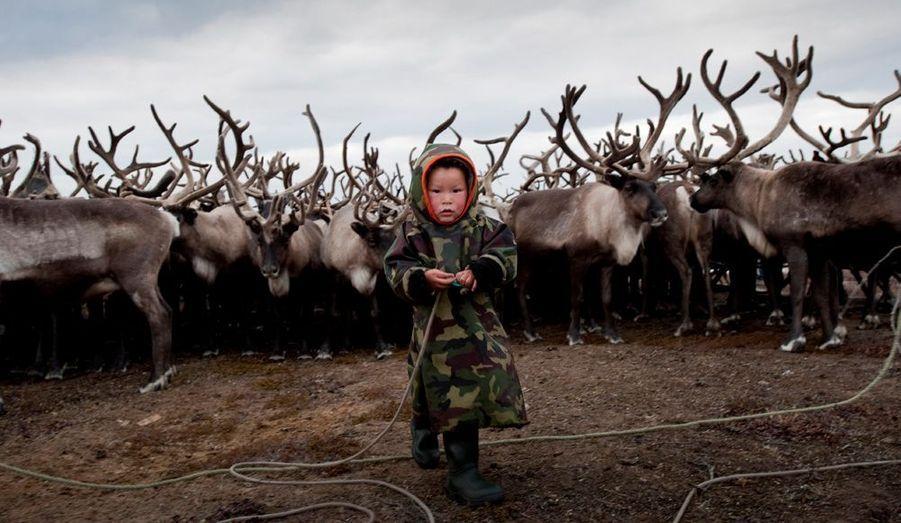 Au fin fond de la Russie, la région yamalo-nenets est plus connue en tant que fief de Gazprom que comme région menacée par le réchauffement de la planète. Pourtant, véritable inquiétude ces dernières années, le changement météo affecte toute la zone, les animaux et la survie des hommes. Notre reporter a suivi sur place une équipe de Greenpeace. On découvre que les premiers réfugiés climatiques viendront peut-être du Grand Nord.