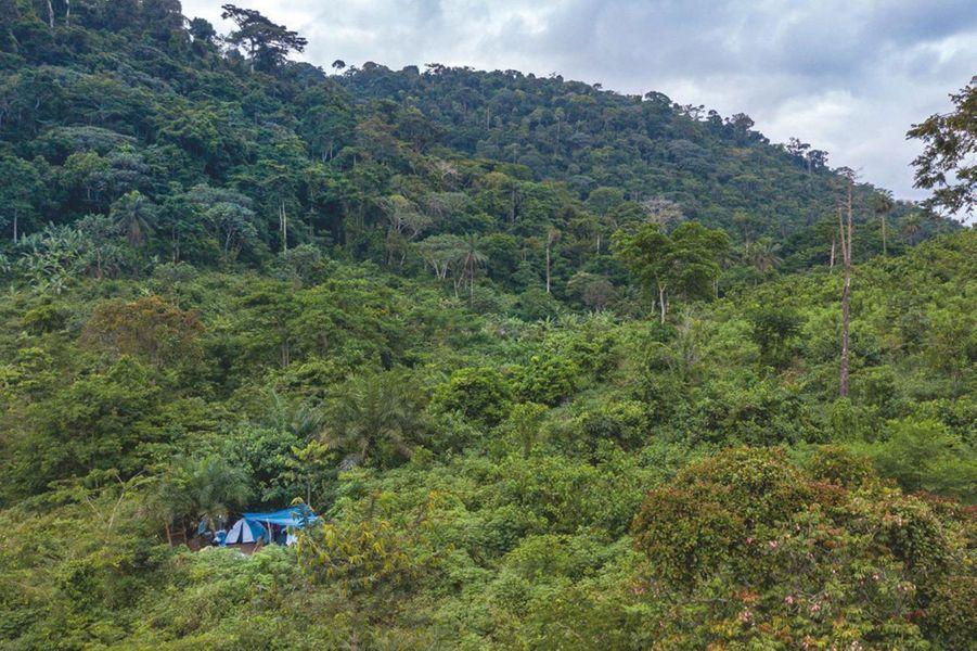 « Le campement de quarantaine, perdu dans la forêt. Principaux dangers : les serpents et le paludisme. »