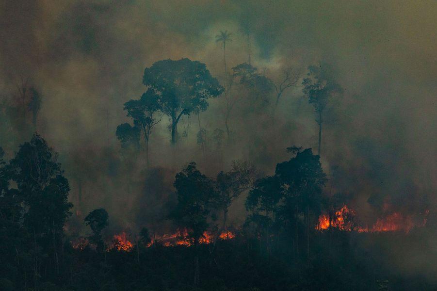 Dans cet Etat frontalier de la Bolivie qui est l'un des plus touchés par les incendies incontrôlables, les habitants se plaignent d'avoir du mal à respirer avec la présence de ces gros nuages chargés de carbone.