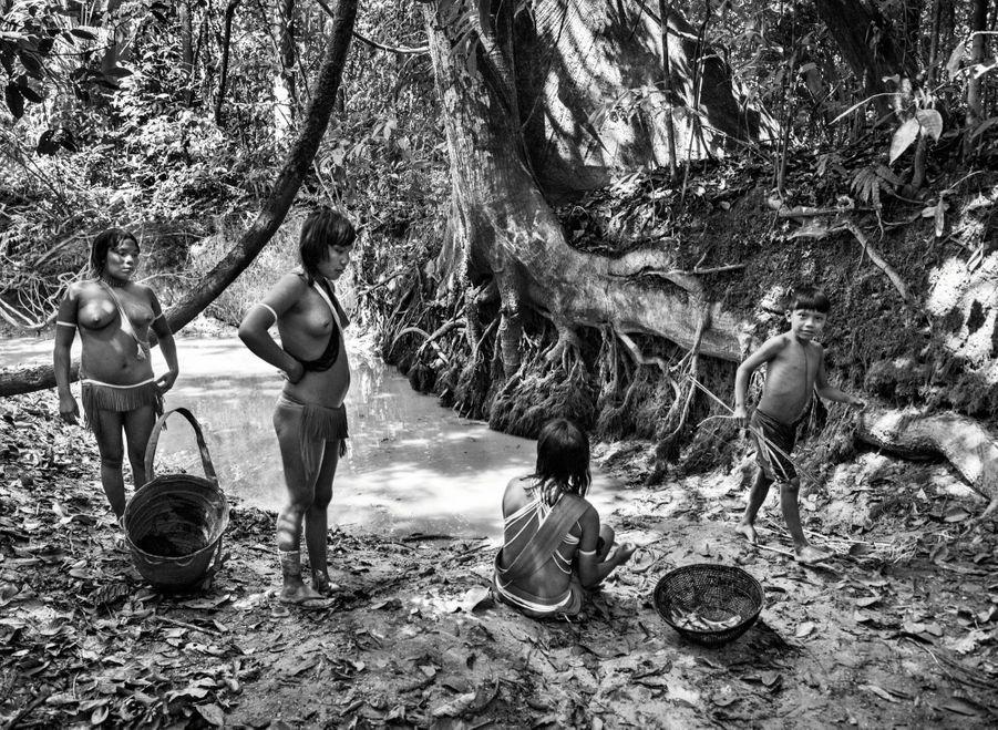 La pêche à la nivrée, un poison végétal que les femmes ont versé dans le ruisseau. Privés d'oxygène, les poissons flottent en surface, où les enfants les cueillent d'une flèche ou à la main