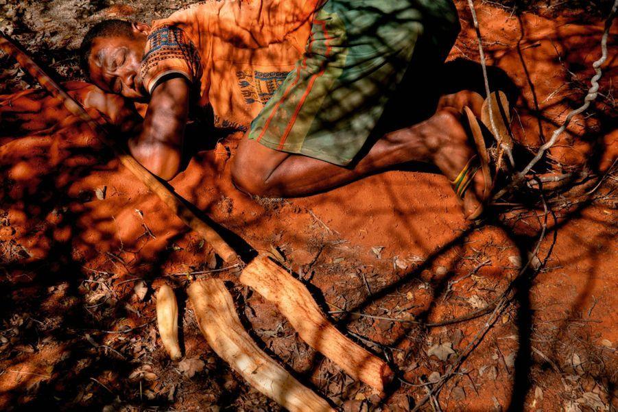 ES RACINES. Pendant la période sèche, on creuse la terre pour extraire les plus humides.