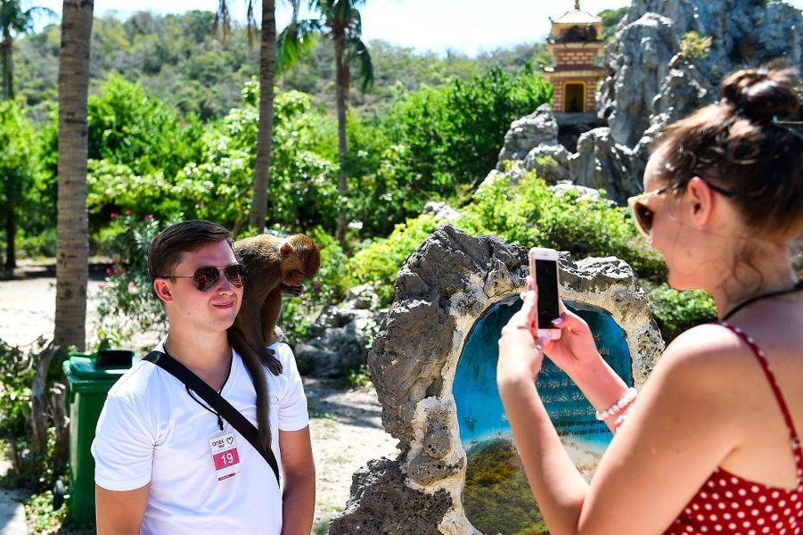 Des touristes arrivent massivement chaque jour sur l'île aux singes.