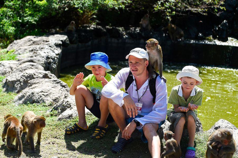 Les touristes viennent sur l'île aux singes pour voir des macaques qui sont n'ont pas peur des humains.