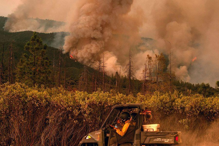 Plus de 3.000 pompiers sont mobilisés pour lutter contre les flammes qui rongent notamment la forêt nationale de Stanislaus et menacent également le parc national de Yosemite.