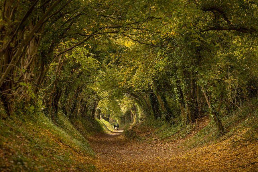 Chichester, Sussex, Angleterre.