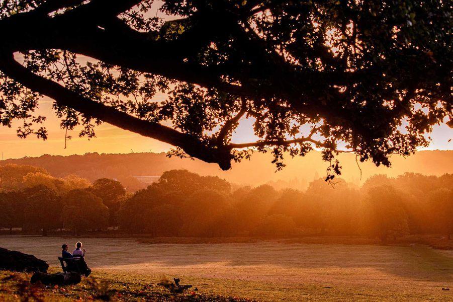 Richmond Park, Londres.