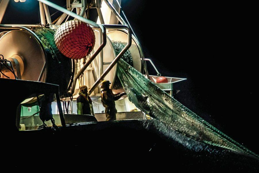Les activistes de Sea Shepherd filment la prise d'un dauphin au large de Lacanau, le 27 février.