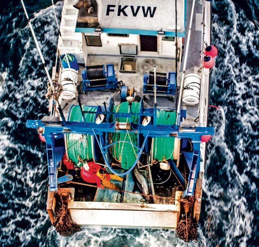 Une énième victime sur le pont d'un chalutier de Saint-GillesCroix-de-Vie, dans le viseur du drone de Sea Shepherd.