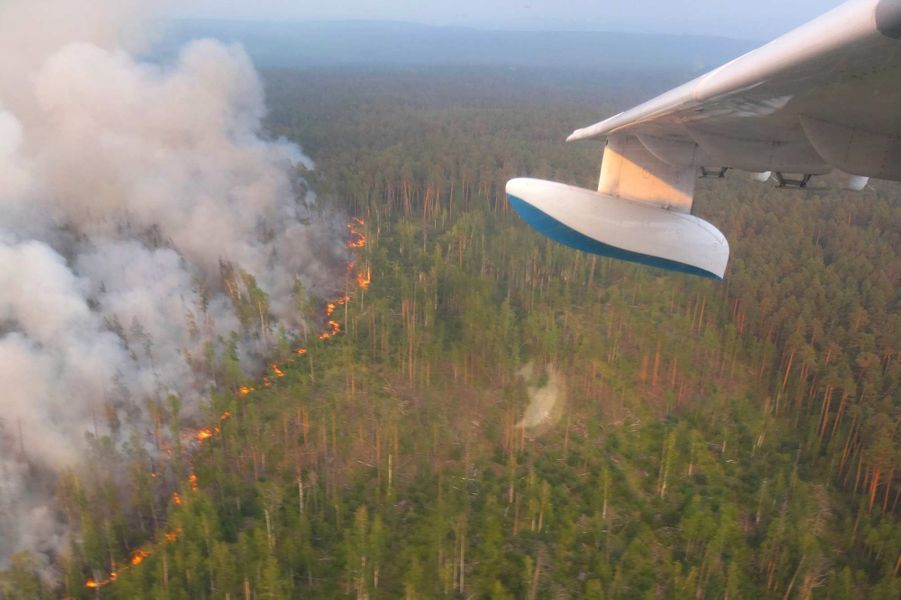 Trump propose d'aider Poutine à combattre les feux de forêt en Sibérie