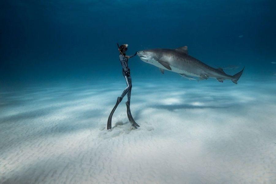 La plongeuse professionnelle est aussi top model. Au rang de ses admirateurs, ce splendide requin-tigre.