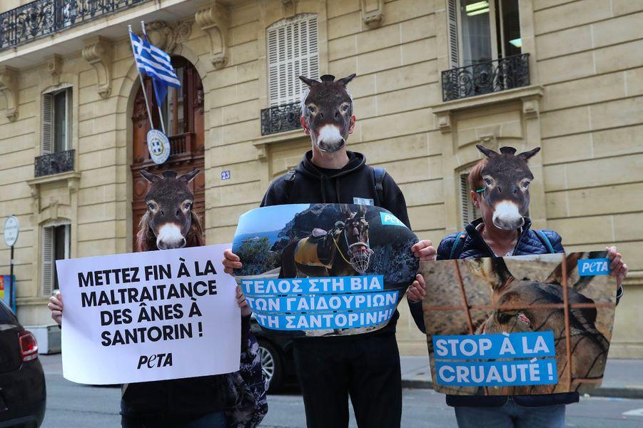 """Pour symboliser """"la souffrance des animaux"""" et """"dénoncer leur exploitation"""", les quelques militants présents portaient un masque représentant une tête d'âne et une pancarte où l'on pouvait lire : """"Mettez fin à la maltraitance des ânes à Santorin!""""."""