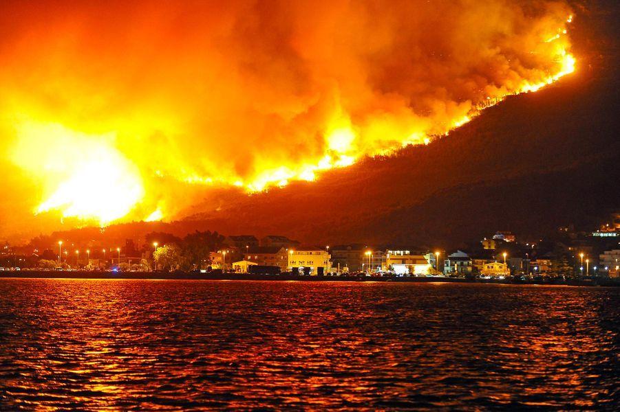 Dans la région de Split (Croatie),4500 hectares de pinède, de broussailles et d'oliviers ont été brûlés.
