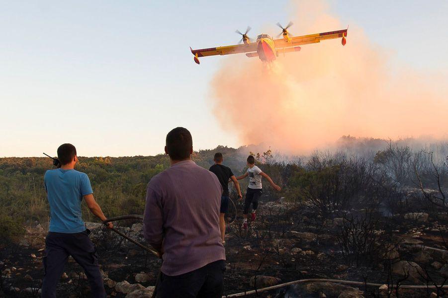 Au Monténégro, plusieurs autres incendies de forêt ont notamment entraîné l'évacuation d'une centaine de campeurs sur la péninsule de Lustica.