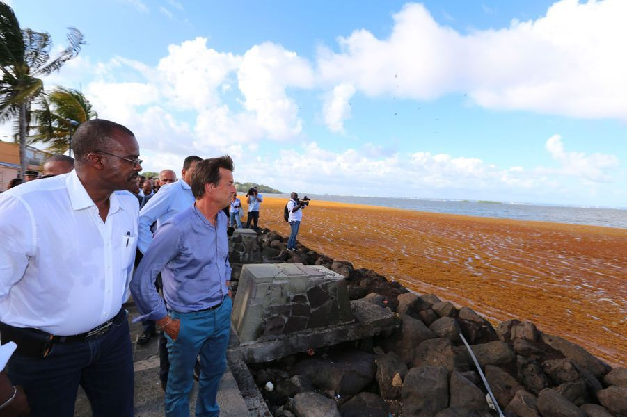 Nicolas Hulot, ministre de la Transition écologique et solidaire, constate les dégâts causés par les sargasses en Guadeloupe, le 11 juin.