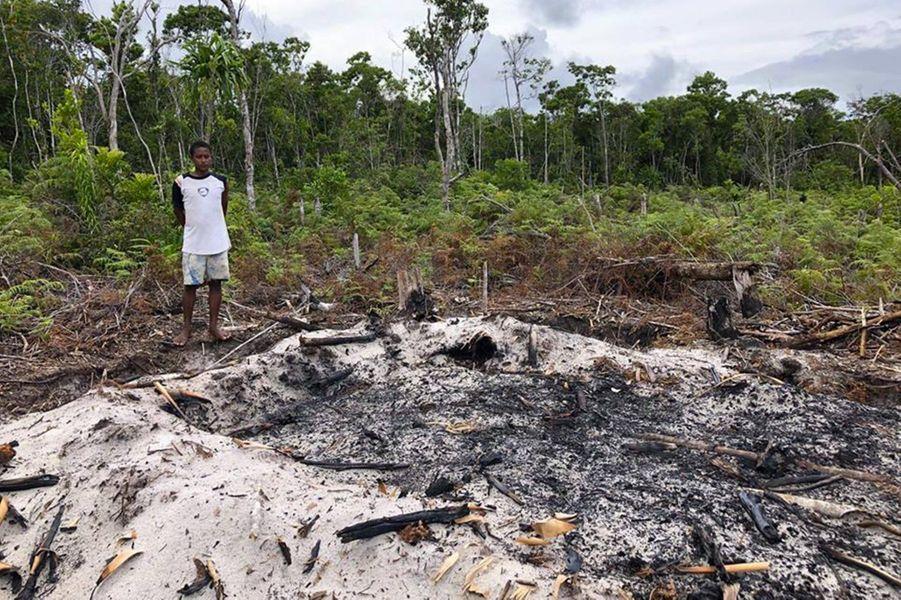 Un fourde charbonniers, là où le bois est brûlé.