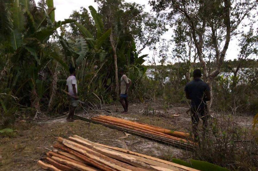 Des rondins de bois stockés pour être envoyés àTamatave.