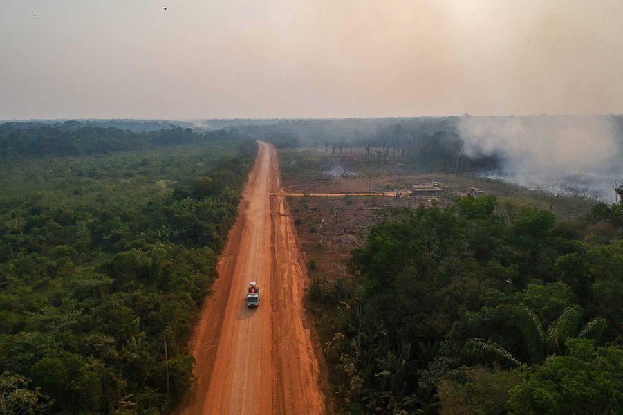 La forêt coupée en deux par une route menant à une scierie.