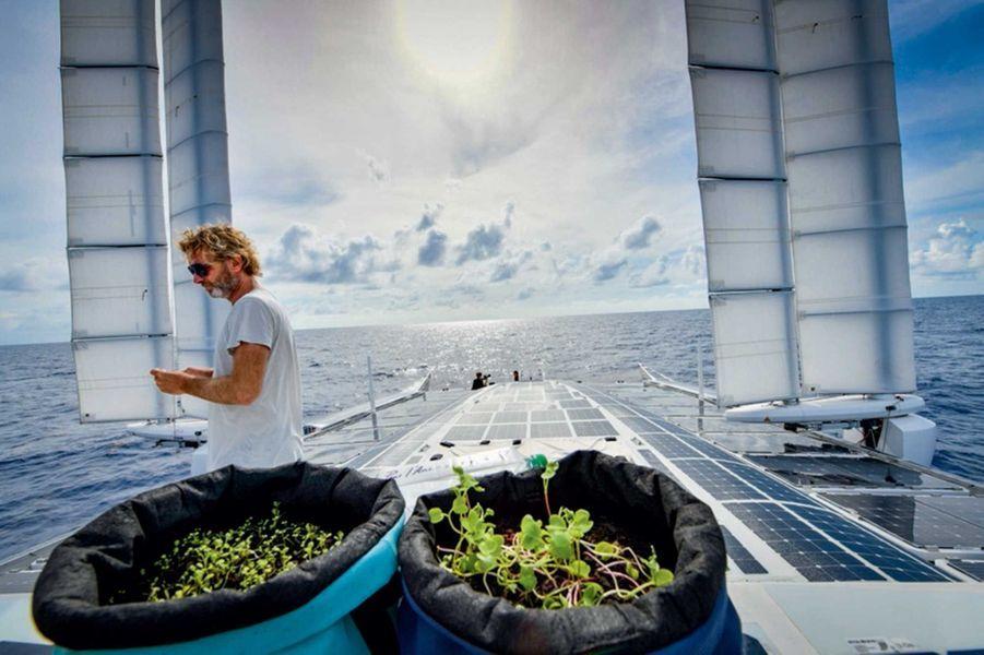 Le coin jardin du bateau : dans les bacs, radis et graines germées.