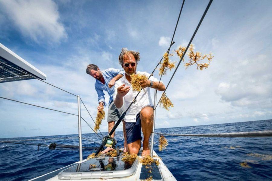 Pour Jérôme Delafosse et Victorien Erussard, capitaine d'« Energy Observer », la pêche est difficile : les algues s'enroulent autour des lignes.