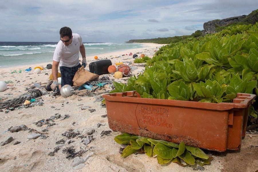 L'île Henderson est aujourd'hui noyée sous un océan de déchets plastiques face auquel les scientifiques se disent démunis.