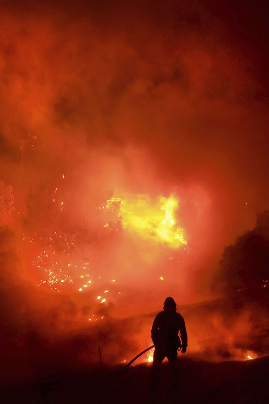 Dimanche, 743 hectares de forêts sont partis en fumée dans le comté deSolano en Californie.