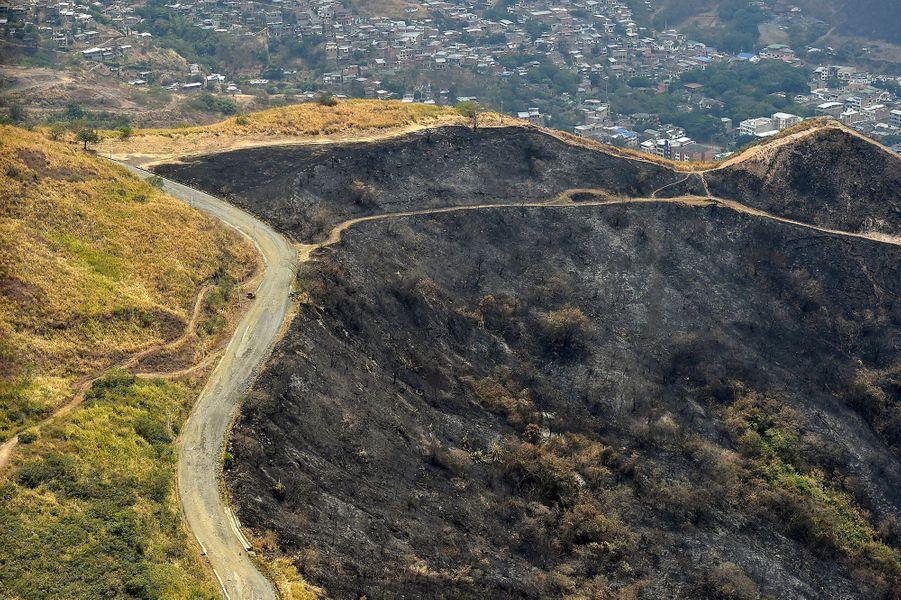 Vue aérienne deCali où de multiples feux de forêt ont démarré.
