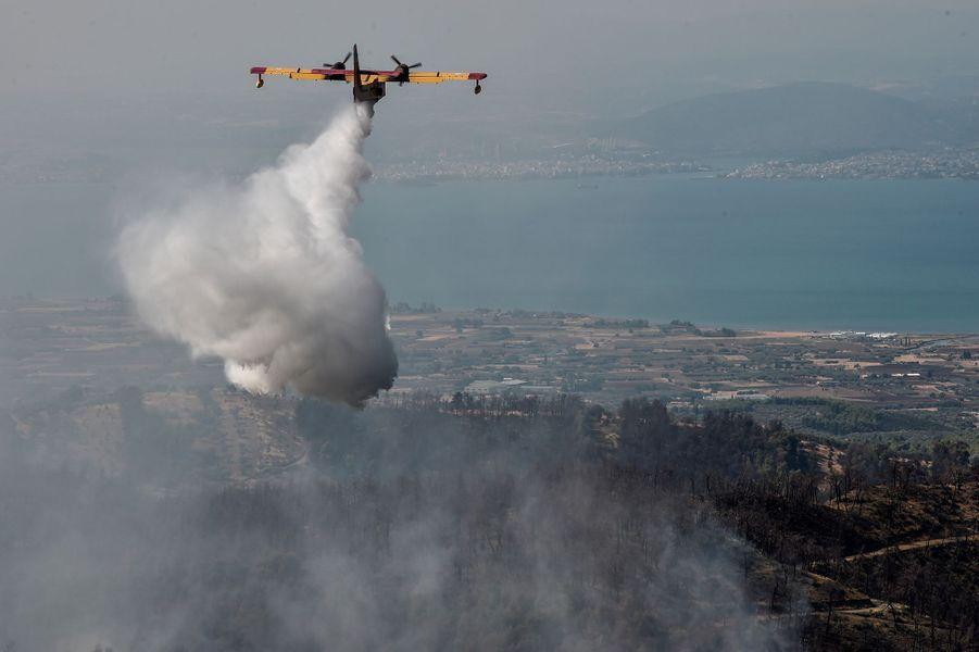Quelque 70 pompiers et 13 véhicules étaient engagés dans la lutte contre le feu dans l'est de l'île grecque de Samos, ont indiqué les services des pompiers.