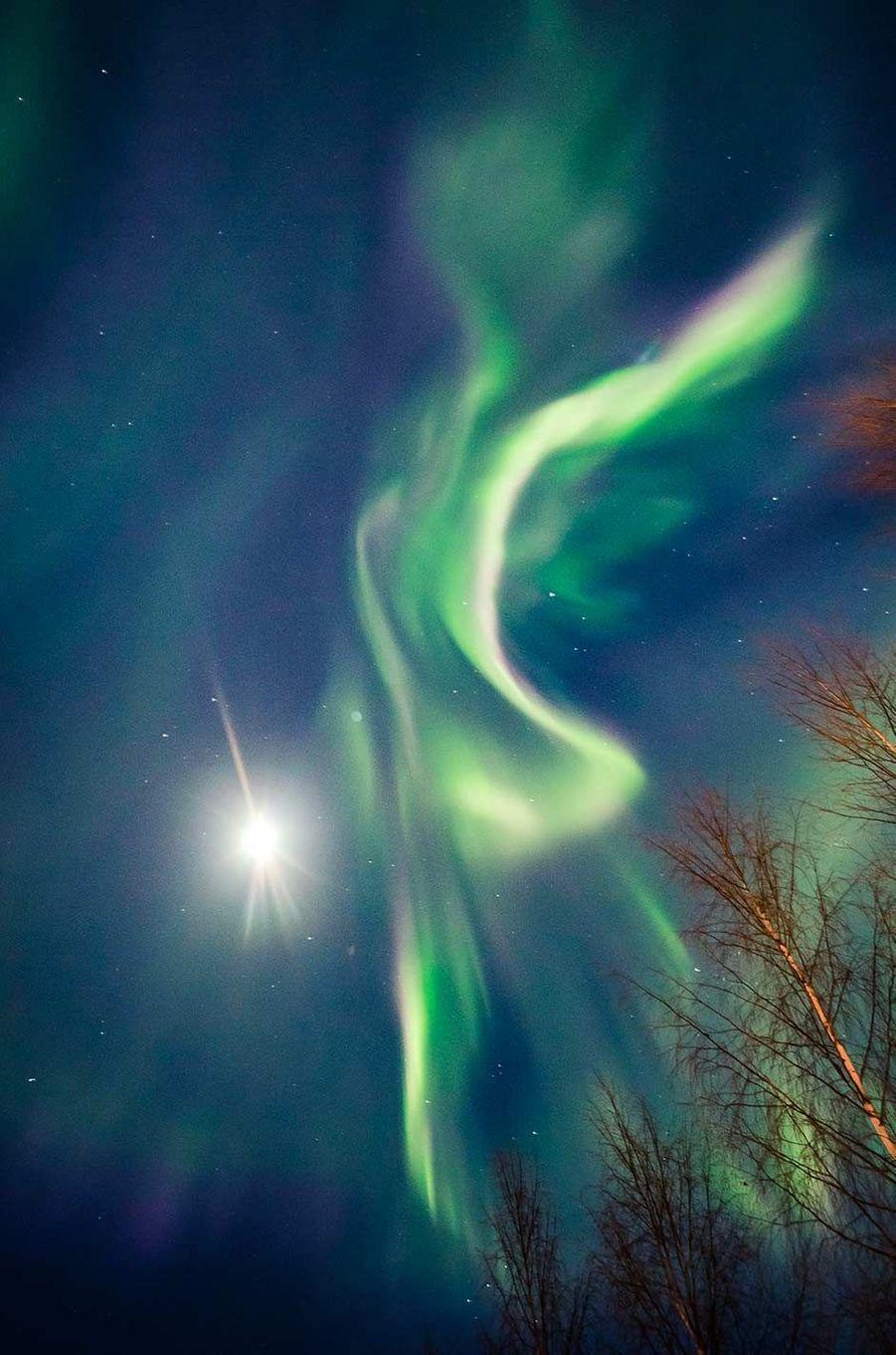 Aurores boréales àRovaniemi, en Finlande, le 6 février 2020.
