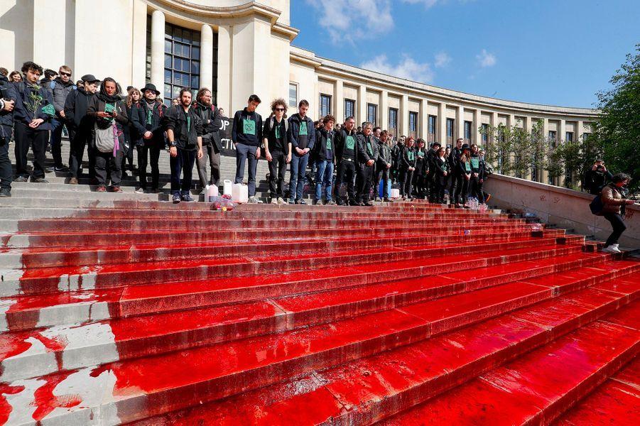 Pour alerter contre le déclin accéléré de la biodiversité, des membres du mouvement Extinction Rebellion sont venus dimanche déverser du faux sang sur les marches du Trocadéro à Paris.