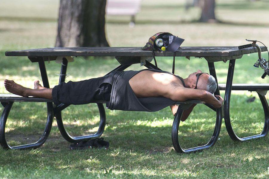 A quelques milliers de kilomètres au nord, le Québec (Canada) étouffe sous les fortes chaleurs. En une semaine, la canicule fait 70 morts dont la moitié à Montréal.