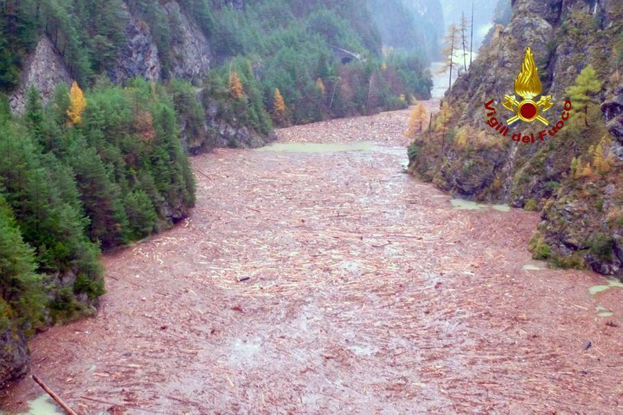 Début novembre, des pluies diluviennes s'abattent sur l'Italie. Dans le nord du pays, dans la région de la Vénétie et de Venise, des millions d'arbres sont déracinés par la tempête. Au total, cet épisode climatique tue 20 personnes dont 12 en Sicile.