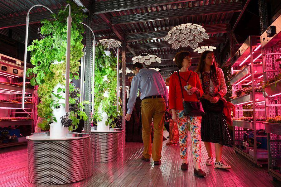 Les jardins du futur se dévoilent à Londres