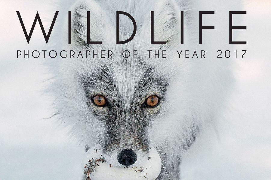 La couverture du livre Wildlife Photographer of the Year 2017.
