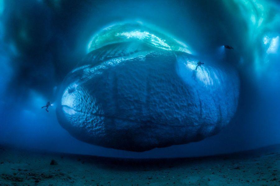 """""""Le monstre de glace"""" parLaurent Ballesta.Laurent et son équipe restaient muets devant l'ampleur des blocs de glace issus de la banquise et impressionnés car ils savaient que seul un dixième de leur volume émergeait. Le groupe, établi sur la base française Dumont d'Urville à l'est de l'Antarctique, réalisait films et photos pour documenter l'impact du réchauffement climatique. Dans certaines parties de l'Inlandsis est-antarctique, la banquise fond plus vite que ce que prévoyaient les scientifiques, menaçant d'entraîner la calotte glaciaire dans la mer ce qui induirait une hausse importante du niveau de l'eau. Quand Laurent découvrit cet iceberg, relativement petit, il sut qu'il avait une chance de réaliser l'image dont il rêvait de longue date: en montrer la partie immergée. L'iceberg était immobilisé dans un champ de glace telle une planète suspendue, et ne pouvant se renverser, on pouvait s'en approcher sans danger. Il fallut trois jours dans l'eau glacée pour repérer les lieux et installer une grille de lignes entre le fond et des bouées, qui permettraient de prendre toutes les images à une même distance, car il fallait vraiment un très grand nombre de prises de vues au grand-angle, pour pouvoir embrasser toute la scène. «Aucun d'entre nous ne pouvait voir l'iceberg en entier, trop près il débordait notre champ de vision et à distance il disparaissait du fait du manque de clarté de l'eau.» De retour à la base, tous attendaient, tendus devant l'ordinateur, que les 147 images de la scène s'assemblent. La base de ce monstre de glace, polie au cours des ans par les courants, brille dans les turquoises et les bleus. En éclairant ses flancs, les compagnons de Laurent donnent l'échelle du Léviathan."""